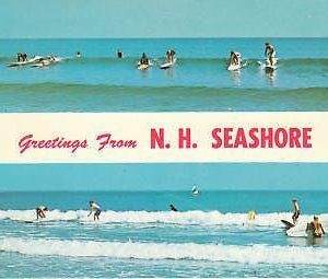 D8944 NH, Seashore Beach Scene Postcard