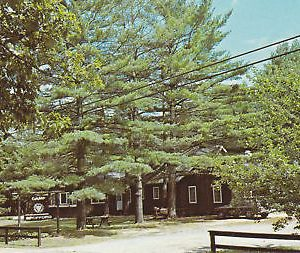 F5959 NH, Lake Spofford Camp Spofford Postcard