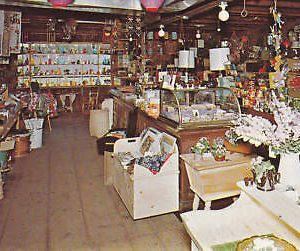 D9575 NH, E. Barrington Calefs Country Store Postcard