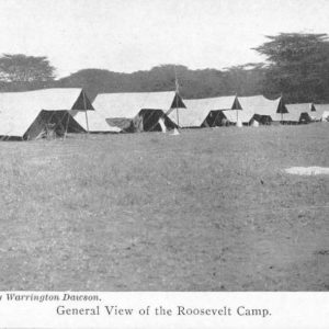 Roosevelts Hunting Trip Africa Camp View Antique Postcard J50026