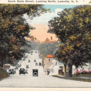 Lowville New York South State Street Looking North Antique Postcard J57945