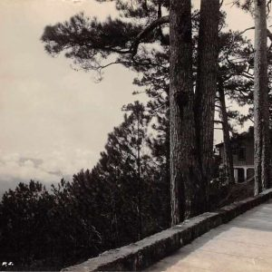 Baguio Philippines Camp John Hay Happy Hollow Real Photo Antique Postcard J63366