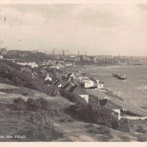 Halsingborg Sweden Palsjo Scenic View Real Photo Antique Postcard J63367