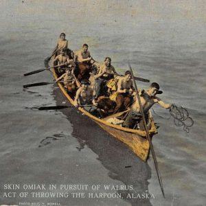 Alaska Eskimo Canoe Hunting Walrus Harpoon Antique Postcard K66685