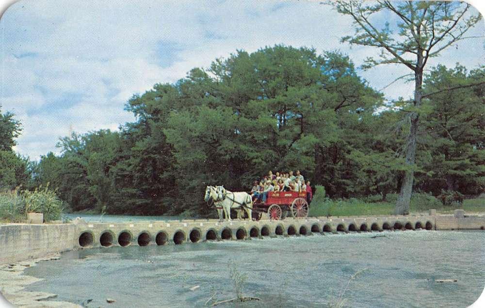 Vintage carriage dallas tx